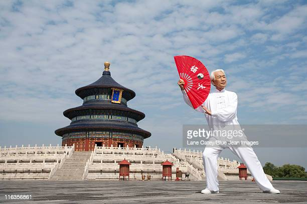 Senior Man Practicing Tai Chi, Temple of Heaven