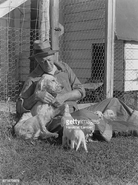 senior man sitting with dog and puppies near fence - pawed mammal stock pictures, royalty-free photos & images