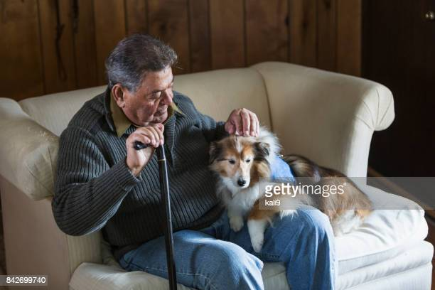senior man sitting with his therapy dog - collie stock photos and pictures