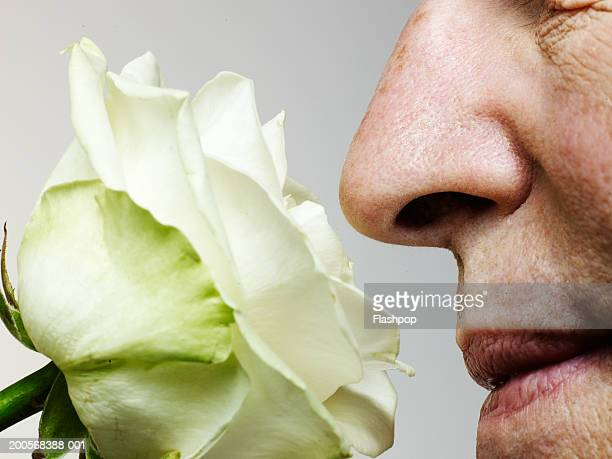 senior man smelling rose, close-up - nariz humano imagens e fotografias de stock
