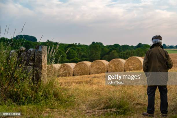 senior man standing at the entrance to a field - johnfscott stock pictures, royalty-free photos & images
