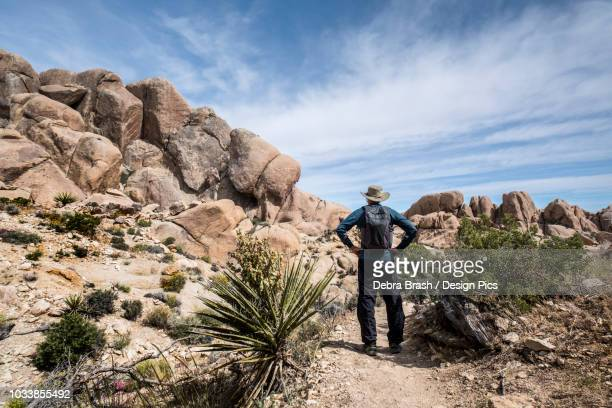 a senior man standing on a trail in joshua tree national park looking at rock formations - local landmark stock pictures, royalty-free photos & images