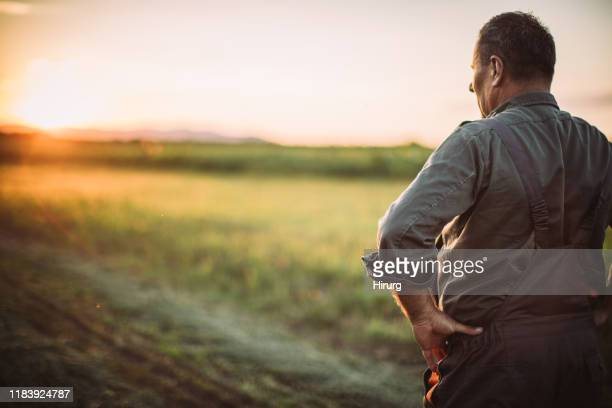 senior man standing on the farm - farmer stock pictures, royalty-free photos & images