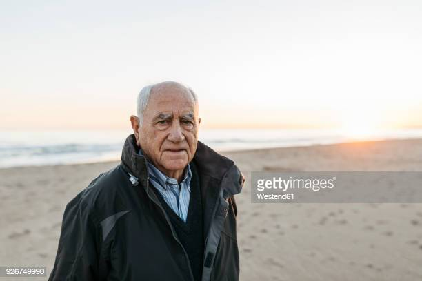 senior man strolling at the beach - 80 89 jaar stockfoto's en -beelden