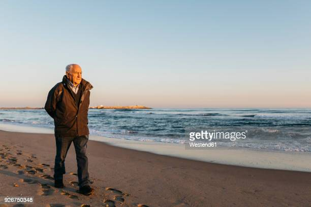 senior man strolling at the beach - only senior men stock pictures, royalty-free photos & images
