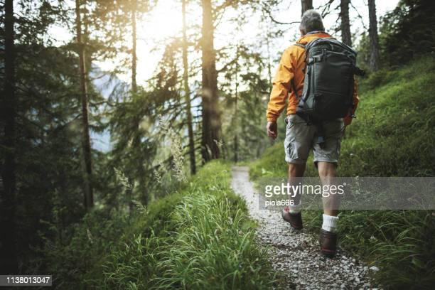 senior man trail wandelen in een berg bos - hiking stockfoto's en -beelden