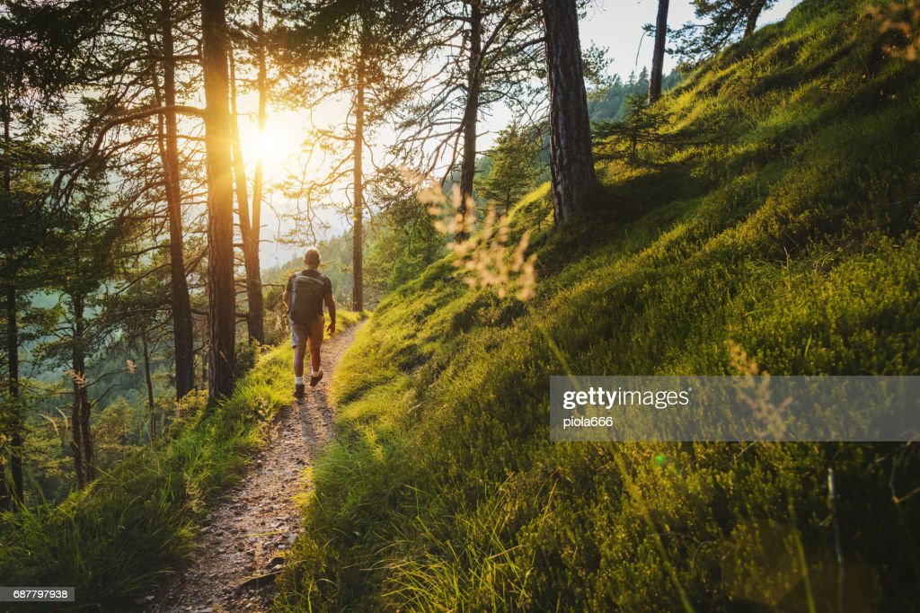Senior man trail hiking in a mountain forest : Stock Photo