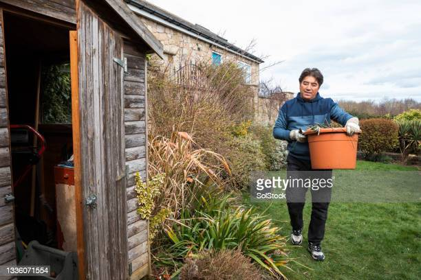 senior man trimming his garden - one senior man only stock pictures, royalty-free photos & images