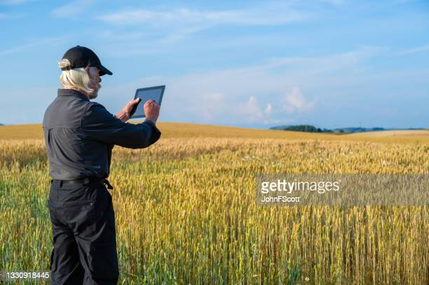 senior man using a digital tablet in a crop field - johnfscott stock pictures, royalty-free photos & images