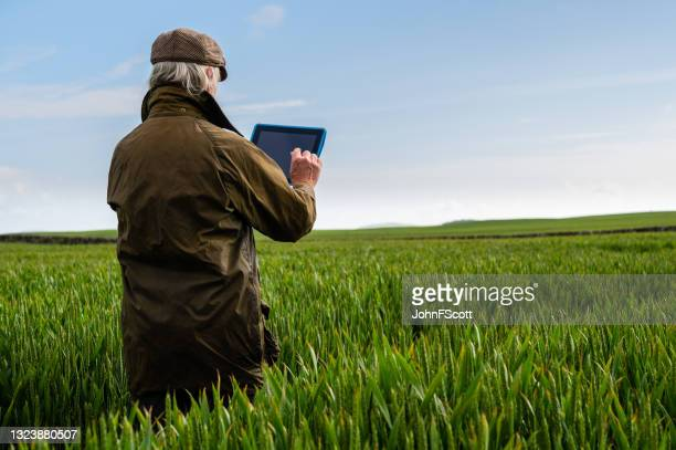senior man using a digital tablet in a field - johnfscott stock pictures, royalty-free photos & images