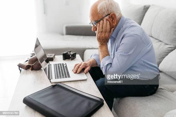 Senior man using laptop, old photo cameras
