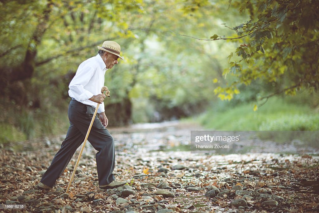 Senior man walking in a forest : Stock Photo