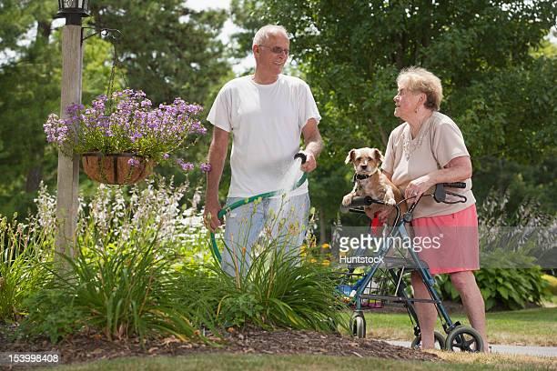 Alter Mann gießen viburnum Blumen und eine Frau tragen ein Hund
