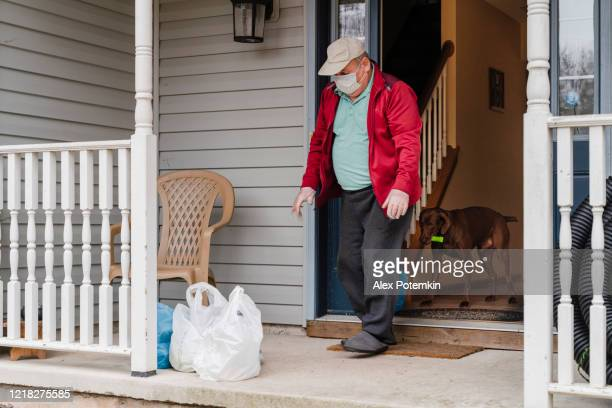 senior man wearing a protective mask and gloves is taking groceries out of the bins left on his porch into his house during covid-19 pandemic outbreak. a curious dog came along with the owner. - epidemic stock pictures, royalty-free photos & images