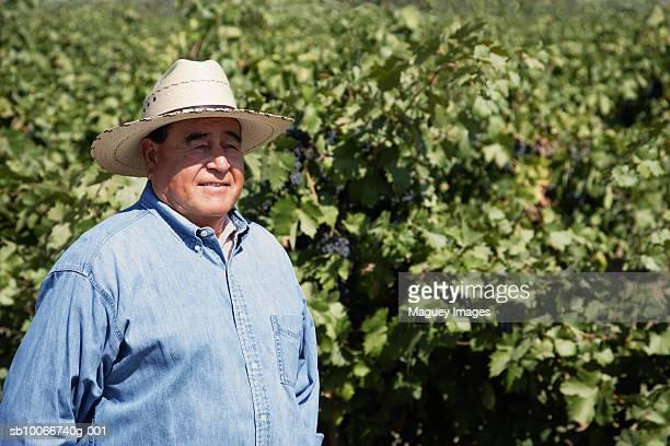 Senior man wearing hat standing in vineyard