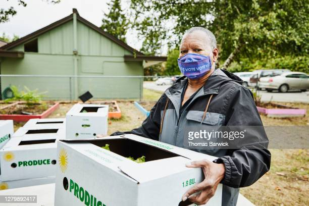 senior man wearing protective face mask that says vote while carrying csa box at community center - assistance stock pictures, royalty-free photos & images