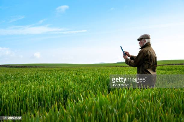 senior man with a digital tablet a crop field - johnfscott stock pictures, royalty-free photos & images