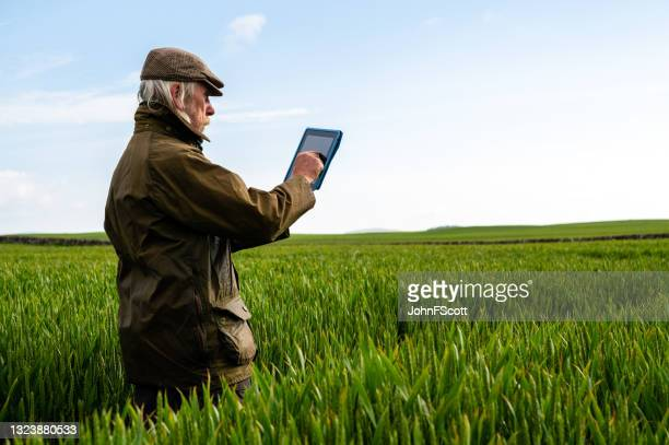 senior man with a digital tablet amongst a crop - johnfscott stock pictures, royalty-free photos & images