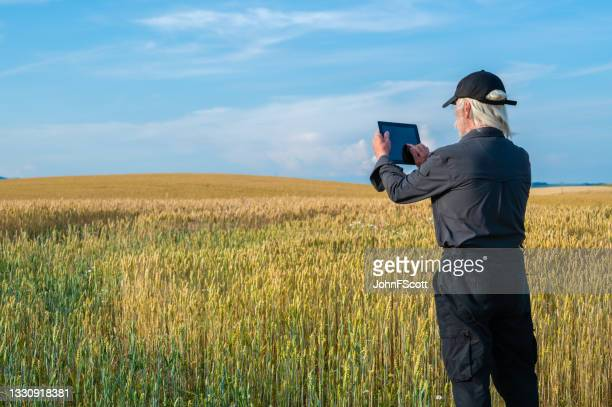 senior man with a digital tablet in a crop field - johnfscott stock pictures, royalty-free photos & images