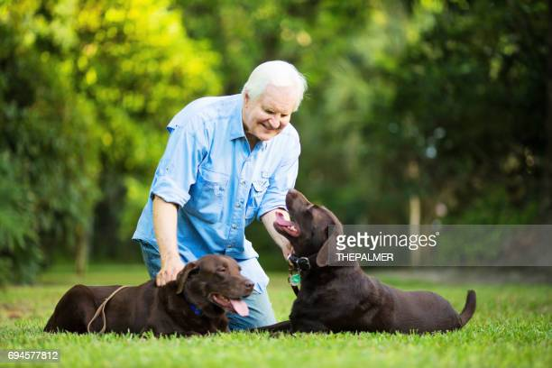 senior man with his dogs - chocolate labrador stock pictures, royalty-free photos & images