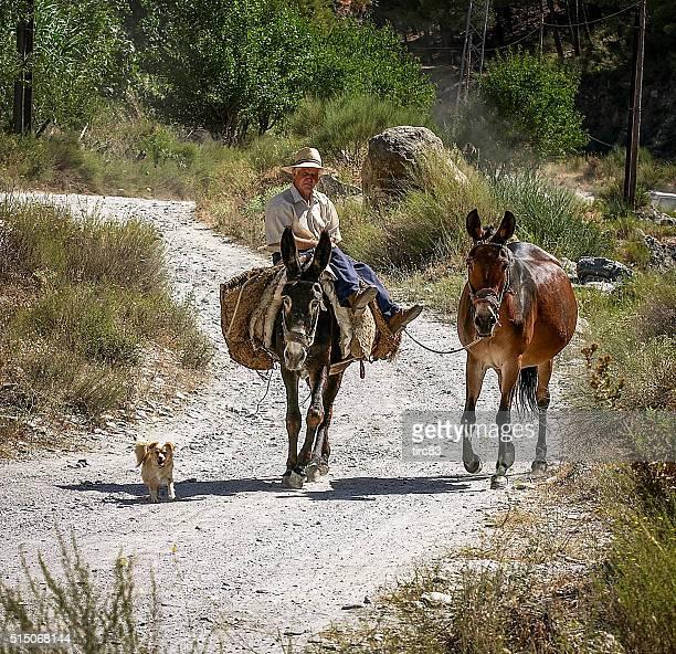 Senior homme avec son âne sur piste andalouse