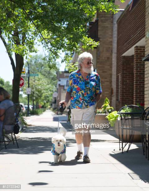 senior man with look alike dog. - adjust socks stock pictures, royalty-free photos & images