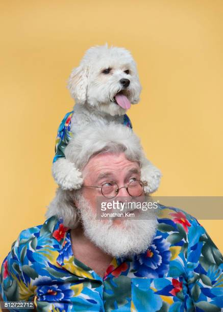 senior man with look alike dog. - buntes hemd stock-fotos und bilder