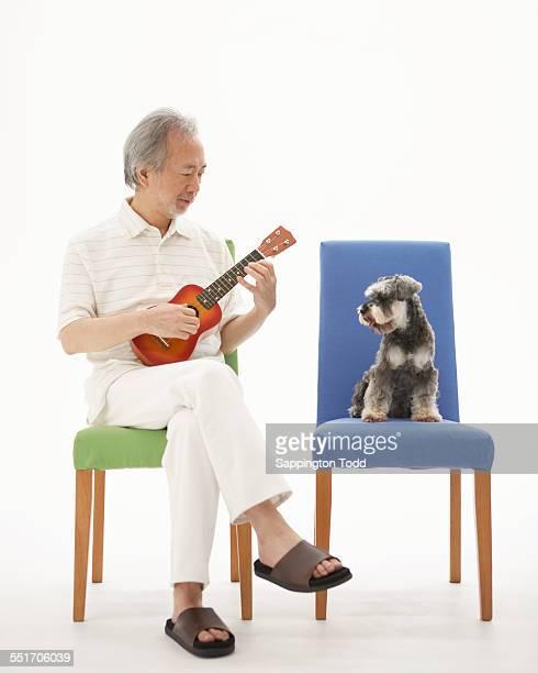 Senior Man With Miniature Schnauzer Playing Ukulele