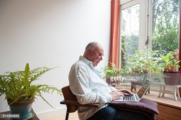 senior man working on laptop among plants - lucy lambriex stockfoto's en -beelden