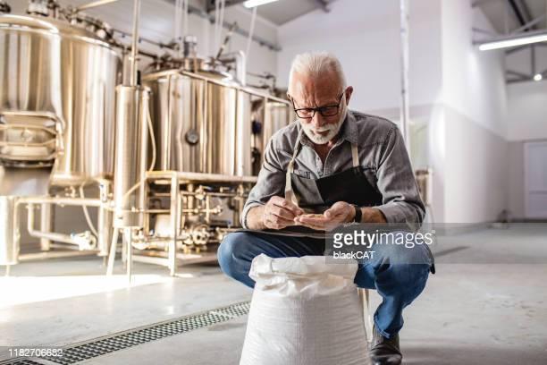 クラフト醸造所のシニア男性 - 醸造所 ストックフォトと画像
