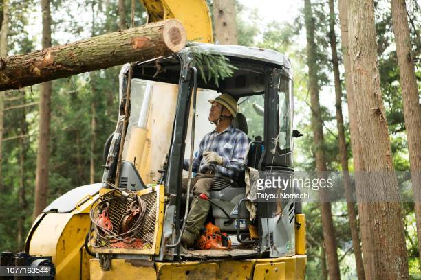 Senior men who work on heavy machinery in the forest