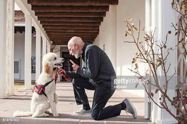 senior men with his service dog and a best friend - servicehund stock-fotos und bilder