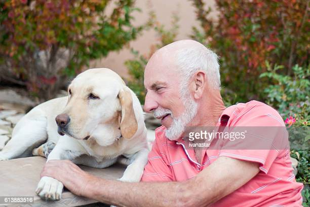 senior men with his service dog, yellow labrador retriever - servicehund stock-fotos und bilder
