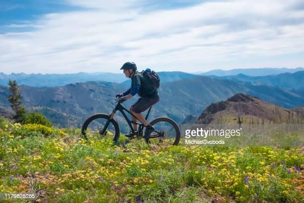 a senior mountain biker riding osberg ridgeline trail - idaho stock pictures, royalty-free photos & images
