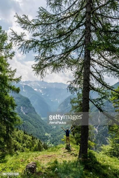 ältere bergsteiger in den alpen - aktiver lebensstil stock-fotos und bilder