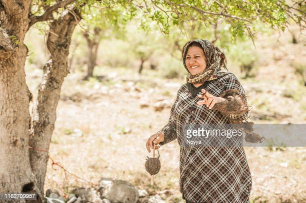 senior nomad woman spinning wool for making carpet, iran - iranian culture stock pictures, royalty-free photos & images