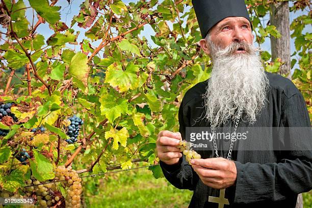 senior-ortodossa, sacerdote prelievo uva raccolta in europa - prete foto e immagini stock