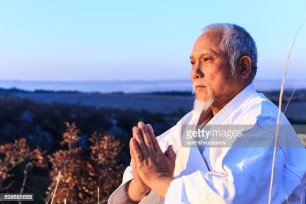 自然に座っていると、瞑想の上級教師 - 武道 ストックフォトと画像