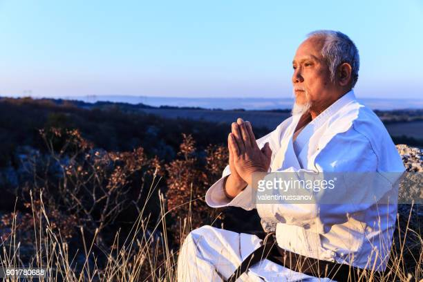 profesor sentado en la naturaleza y meditar - taekwondo fotografías e imágenes de stock