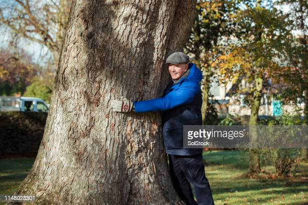 senior tree-hugger in autumn park - adults only stock pictures, royalty-free photos & images