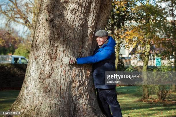 senior boom-knuffel in de herfst park - alleen volwassenen stockfoto's en -beelden