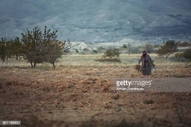 cappadocia, turkey - may 02, 2014: senior turkish woman with shovel working in the field - istanbul province stock photos and pictures