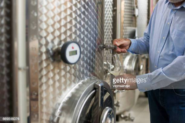 winemaker Senior