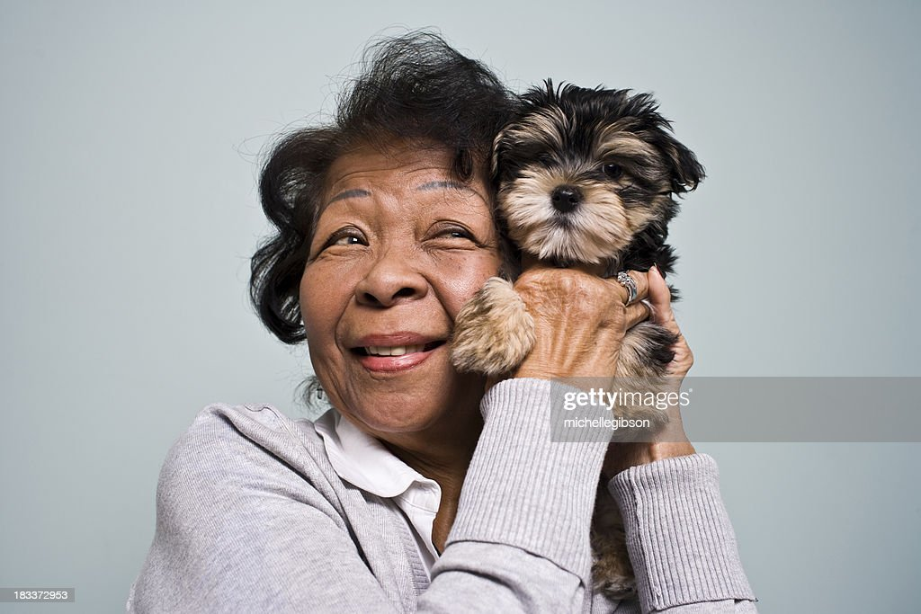 Senior Woman and a Puppy : Stock Photo