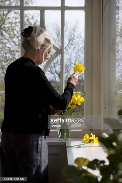 Senior woman arranging daffodils in vase on window sill