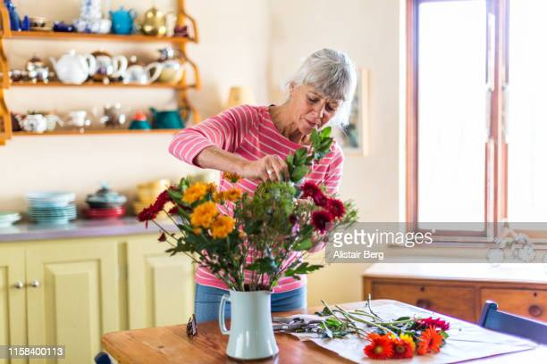 senior woman arranging freshly cut flowers in a vase - bunch of flowers stock pictures, royalty-free photos & images