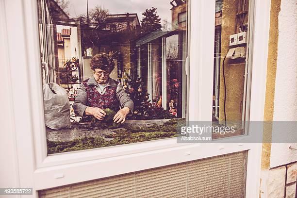Senior  Woman Arranging Nativity Scene, Balcony, View through Window, Europe