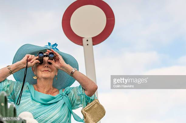 senior woman at races looking through binoculars - women in see through dresses stock photos and pictures