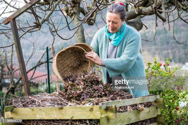senior woman composting leaves in a vegetable garden in spring, europe - humus photos et images de collection