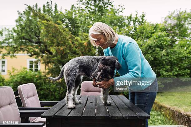 Senior woman cutting dogs nails on table at yard